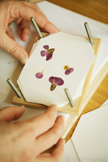 photographs of hand made greeting cards and illustrations by Bowdon designer Wendy Lee-6